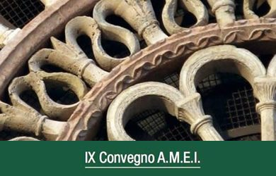 IX CONVEGNO AMEI-MEU ASSISI